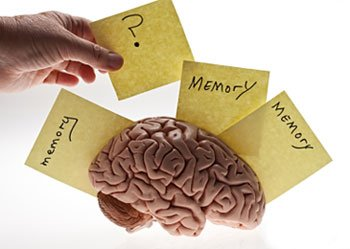 Memory Activity False Memories