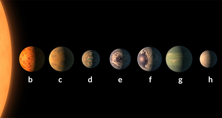 The discovery of Trappist 1
