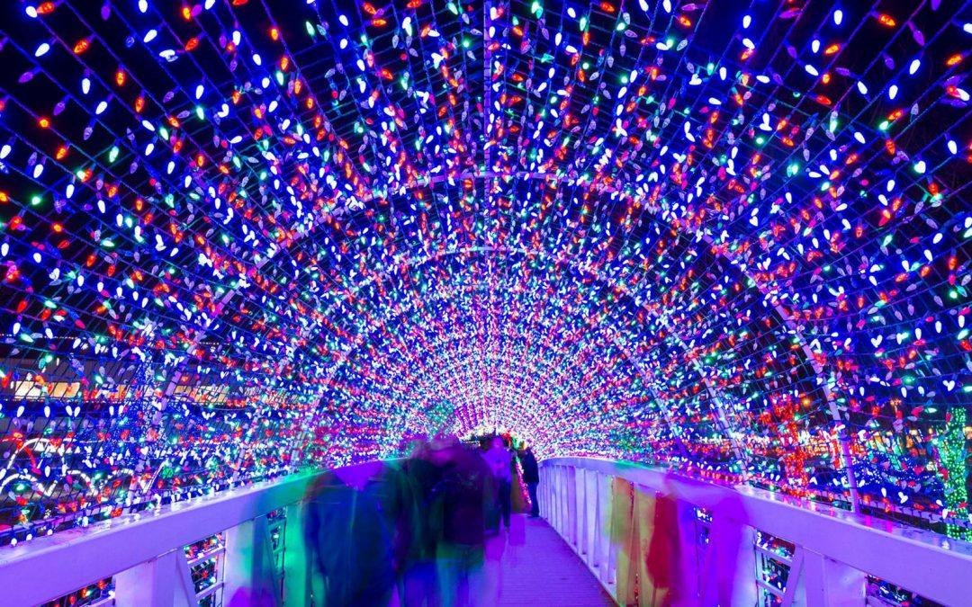 Christmas lights in Toulouse, France