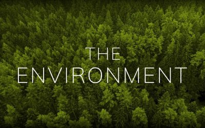 How man is ruining the environment