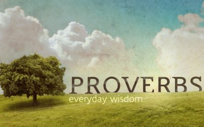 Can you find these ten English proverbs from the images?